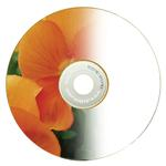 Delkin Devices DVD-R Archival Gold InkJet  Recordable Disc 25 Spindle