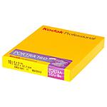 Kodak Portra 160 4x5(10) 160 ASA