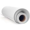 Epson 13x20 Exhibition Canvas Satin - Roll