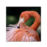 Fujifilm Vivid Canvas Semi-Gloss Inkjet Paper 350 - 17in.x40ft.