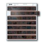 Print File 35-7 (100) Negativge Pages