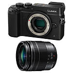 Panasonic Lumix GX8 Mirrorless Micro 4/3 Body and 12-60mm f/3.5-5.6 Lens