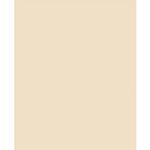 Savage Widetone Seamless Background Paper - 107in.x50yds. - #19 Egg Nog