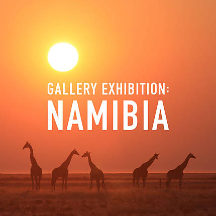 *FREE RSVP* Gallery Exhibition: Namibia