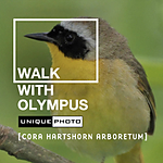 Walk with Olympus and Unique Photo at Cora Hartshorn Arboretum