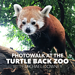 Photowalk at Turtle Back Zoo with Michael Downey